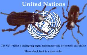 U.N.Patched